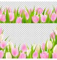spring pink tulip borders set vector image