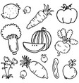 doodle of vegetable and fruit vector image