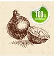 Hand drawn sketch vegetable onion Eco food vector image