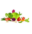 delicious healthy organic harvest from farm vector image