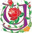 rosette letter Y vector image