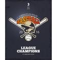 Retro baseball poster vector image
