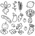 doodle of vegetable various vector image