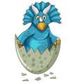 Blue dinosaur in gray egg vector image