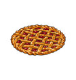 hand drawn cherry pie thanksgiving symbol food vector image