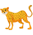 Cartoon Cheetah vector image vector image