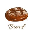 Bread loaf sketch icon for bakery shop vector image vector image