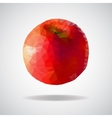 low poly red apple vector image