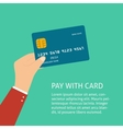Flat plastic card vector image vector image