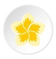 Frangipani flower icon flat style vector image