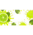 banner with lime and splash juice vector image