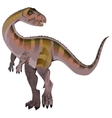 Carnivorous dinosaur Allosaurus vector image