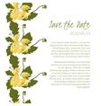 Delicate Dandelion flower vector image