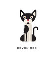 devon rex intelligent short-haired cat feline vector image