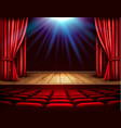 festival night show poster a theater stage with a vector image