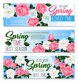 banners of spring time roses bunches vector image