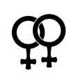female icon lesbian vector image
