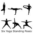 Yoga standings vector image