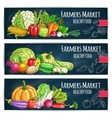 Farmers Market banners with sketched vegetables vector image