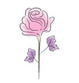 rose graphic vector image vector image