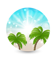 Summer holiday picture with sunlight and palm leav vector image