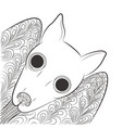 doodle bat head night animal tangle pattern vector image