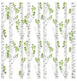 birch trunks background vector image