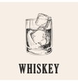 Whiskey Glass Hand Drawn Drink vector image