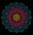 new round mandala-13 vector image