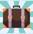 travel tourism fashion baggage luggage vacation vector image