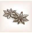 Star anise hand drawn sketch style vector image