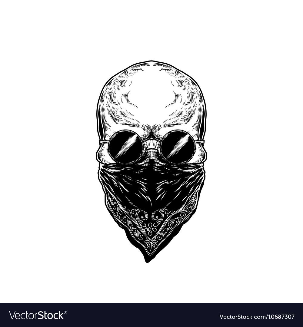 Human skull with glasses vector