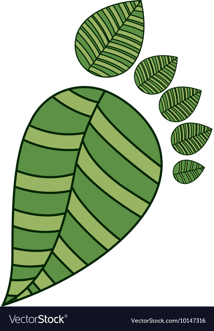 Forming leaves a footprint isolated icon design vector