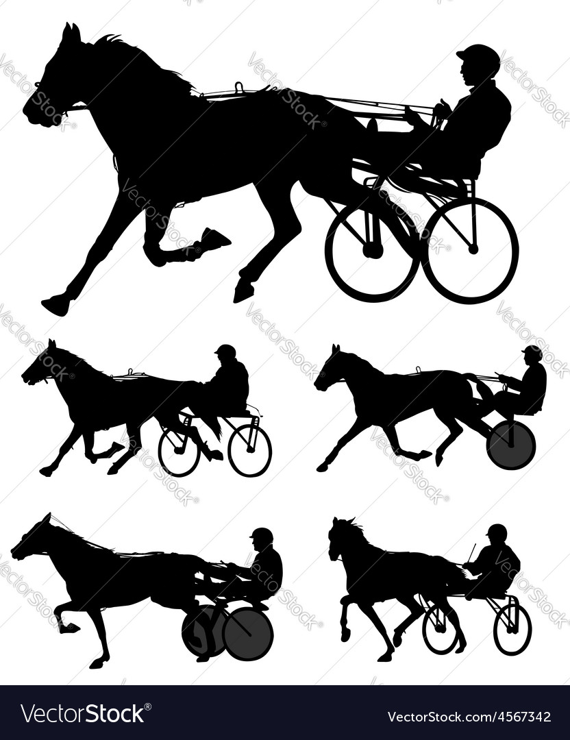 Harness racing vector