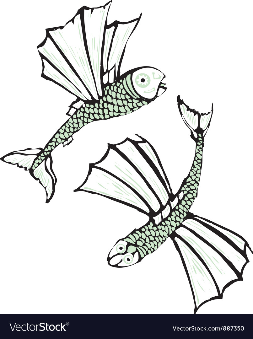 Two flying fish vector