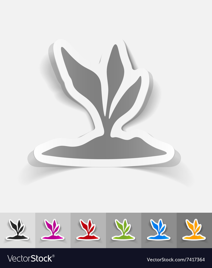 Realistic design element rootcrop vector