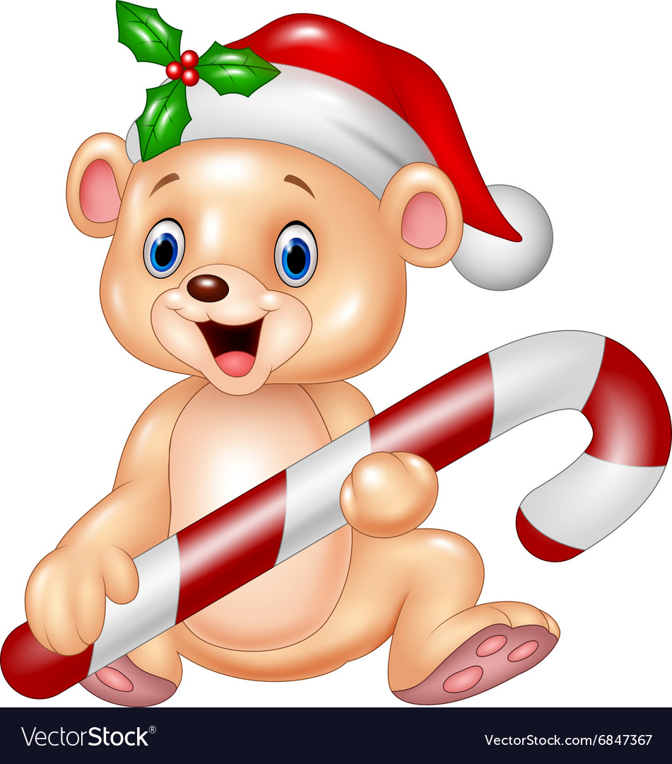 Cute baby bear holding christmas candy vector