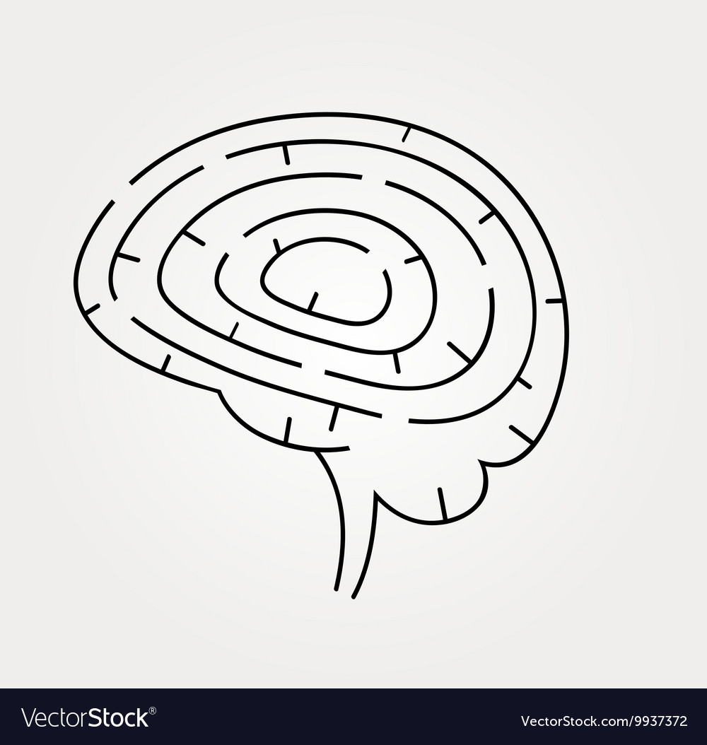 Brain maze with correct vector