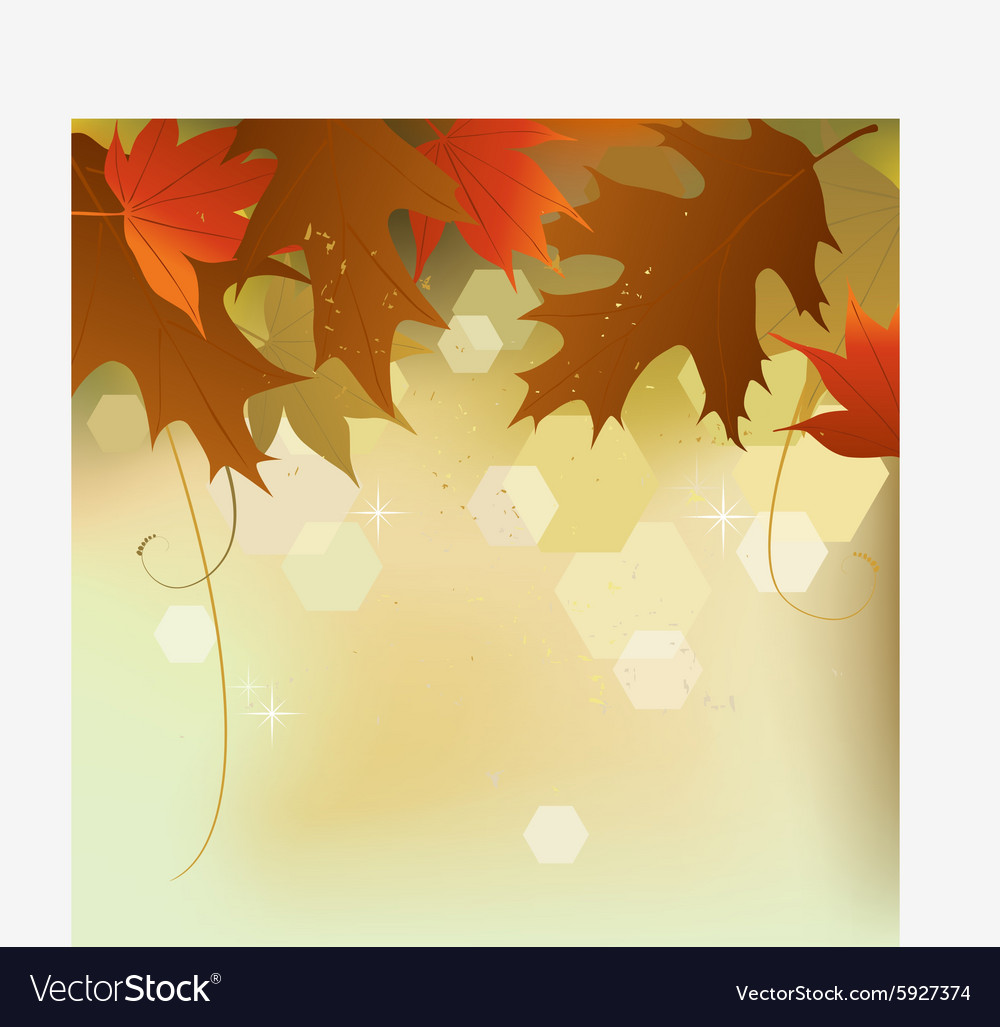 Autumn background leaves vector