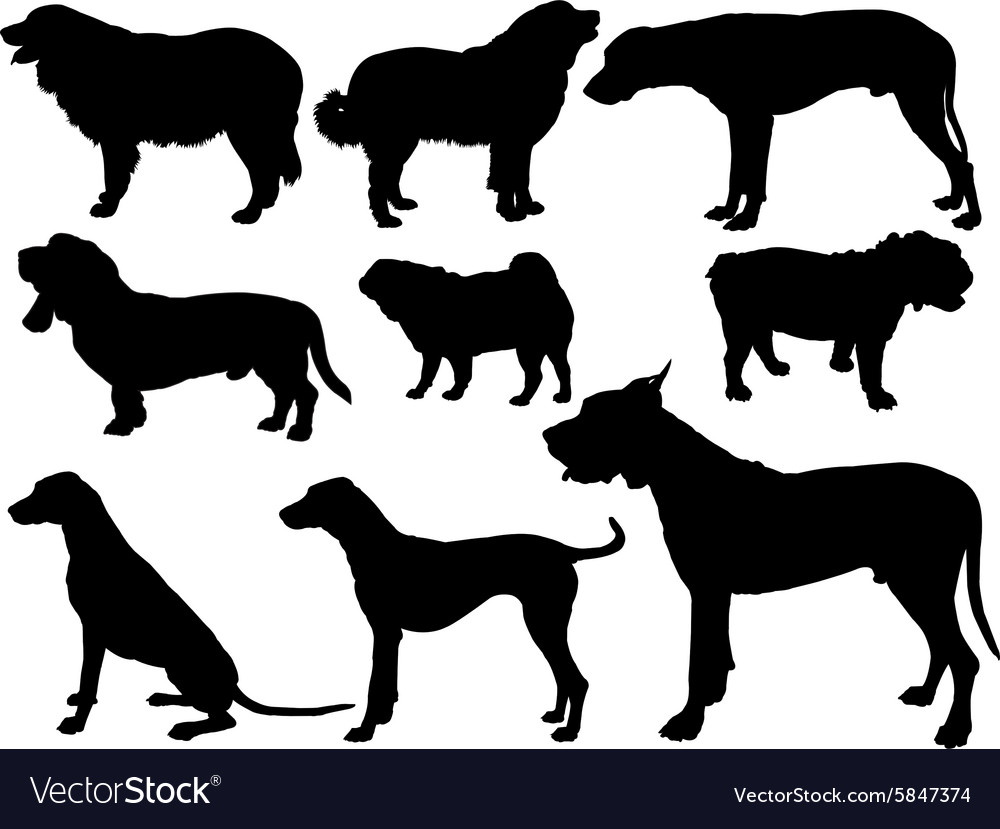 Dogs collection 2  vector