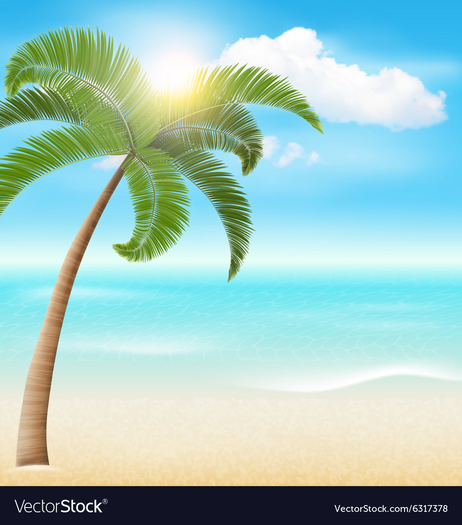 Beach with palm and clouds summer vacation holiday vector
