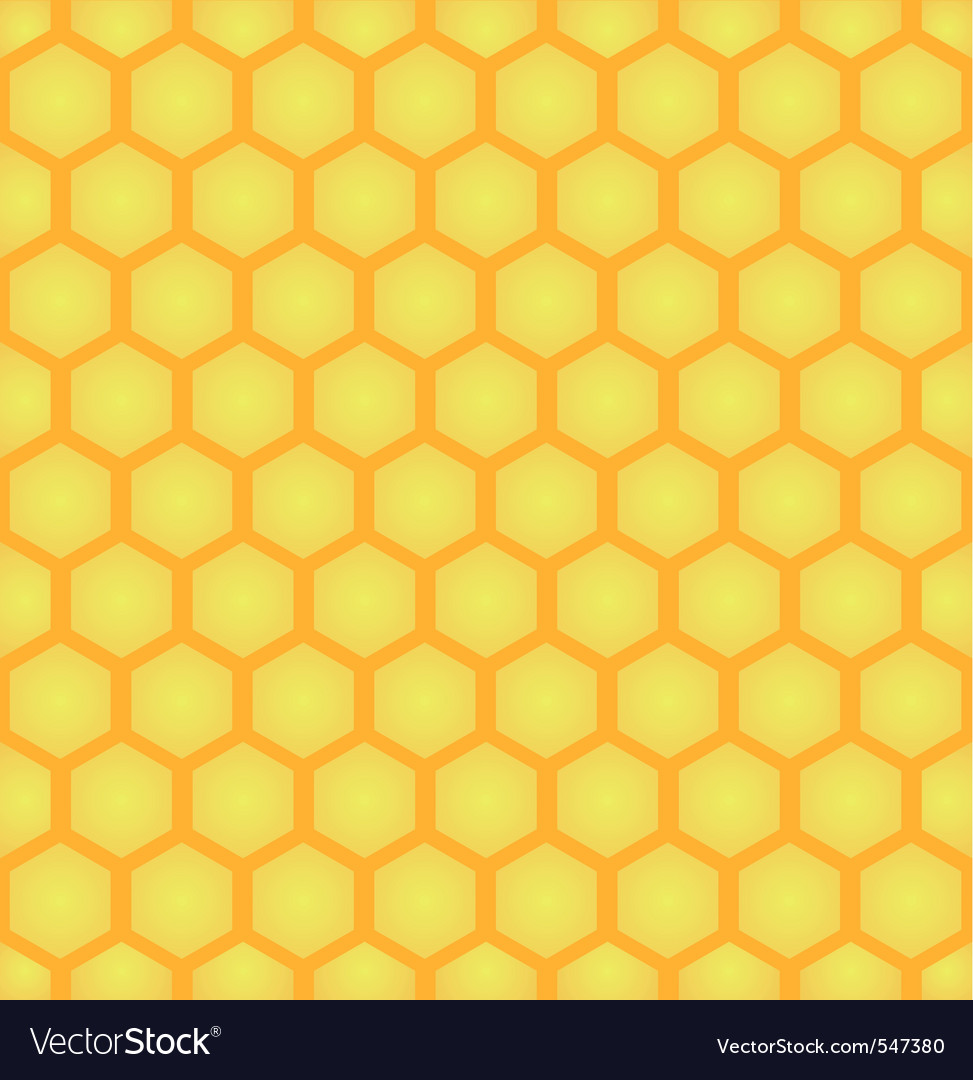 Honey cell background vector