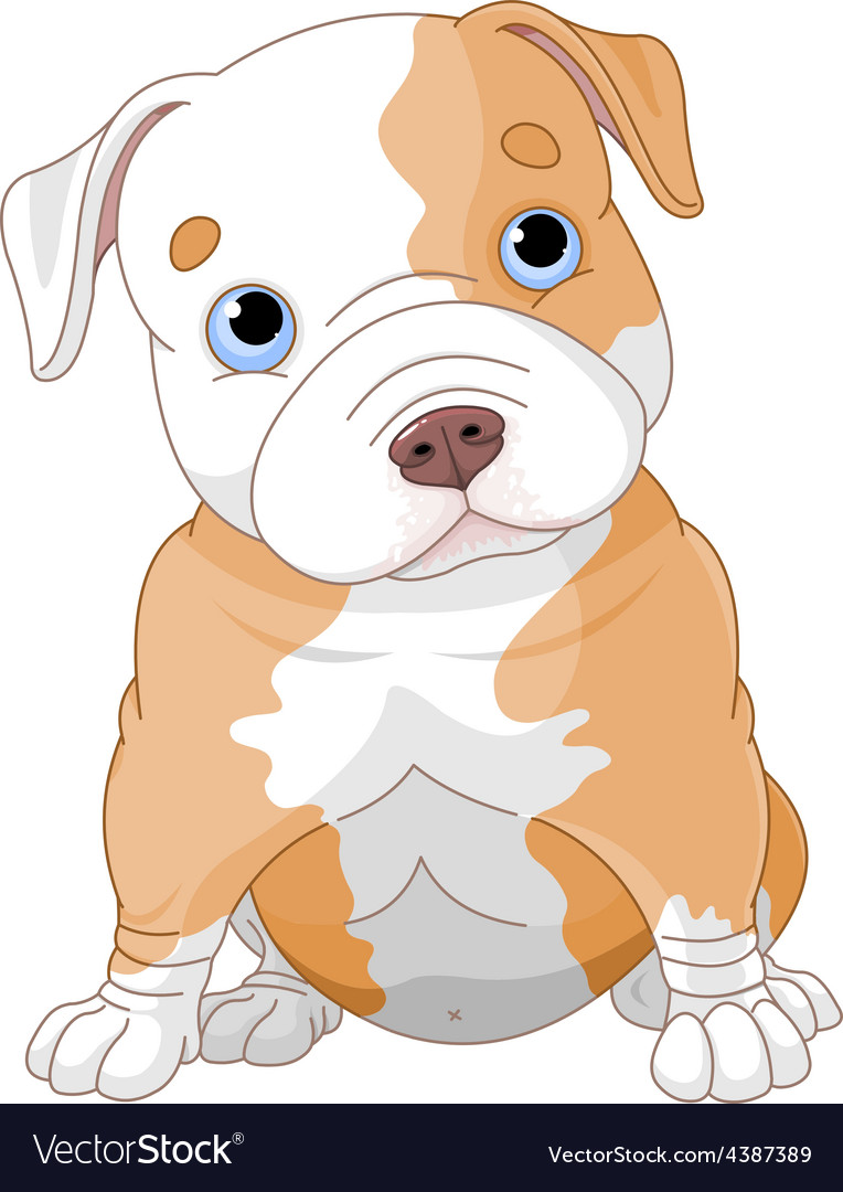 Pitbull puppy vector