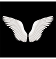 object angel wings vector image