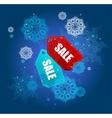 Sale labels winter set vector image