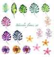 Watercolor floral set for your design vector image