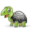 Cute Smile Turtle cartoon vector image