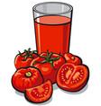fresh tomato juice vector image
