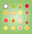 set with fruit icons vector image