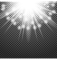 Shiny sunburst of sunbeams on the abstract vector image